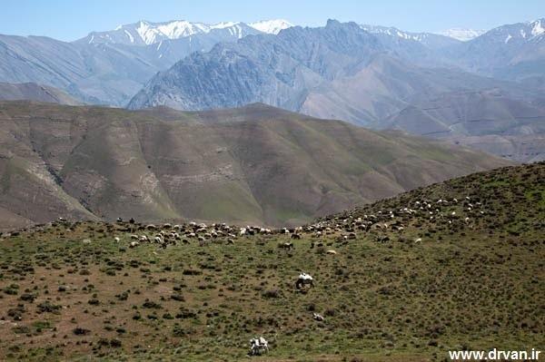 جاده روستای دُروان
